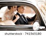 wedding couple | Shutterstock . vector #741565180