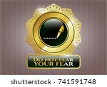 gold shiny emblem with writer... | Shutterstock .eps vector #741591748
