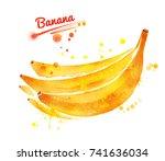 watercolor illustration of... | Shutterstock . vector #741636034