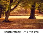 beautiful colors of autumn in... | Shutterstock . vector #741745198