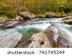 forest river. water cascades... | Shutterstock . vector #741745249