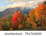 fall scene in the wasatch front ... | Shutterstock . vector #741763600