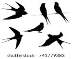 Stock vector set of swallow silhouettes vector illustration 741779383
