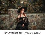 close up portrait of... | Shutterstock . vector #741791380