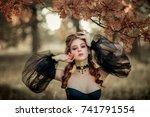 portrait of magnificent fashion ... | Shutterstock . vector #741791554