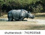 a rhinoceros in the dirt grazes ... | Shutterstock . vector #741903568