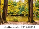 Autumn Trees At Forest River...
