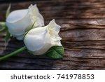 Stock photo  white roses on wooden floor 741978853