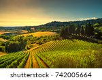 Casale Marittimo Village Vineyards Countryside - Fine Art prints
