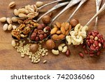 various kinds of nuts  cedar ... | Shutterstock . vector #742036060