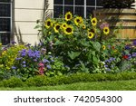 Flower Bed With Different...
