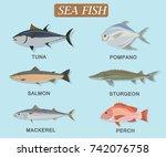 set of sea fish tuna pompano... | Shutterstock .eps vector #742076758