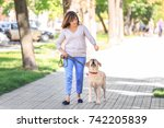 Stock photo mature woman walking her dog in park 742205839