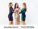 three charming  girls spending...   Shutterstock . vector #742230286