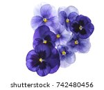 photographed close up of 8... | Shutterstock . vector #742480456