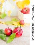 autumn still life with apples... | Shutterstock . vector #742495828