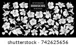 set of isolated white... | Shutterstock .eps vector #742625656