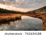 sunset reflection in a forest ... | Shutterstock . vector #742634188