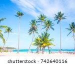 caribbean palm trees | Shutterstock . vector #742640116