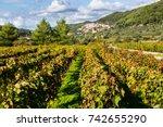 looking along the vineyards of...   Shutterstock . vector #742655290