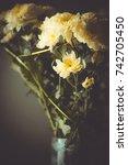bouquet of chrysanthemums in a... | Shutterstock . vector #742705450