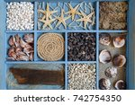 set of sea shells collection on ...   Shutterstock . vector #742754350