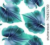 seamless tropical flower  plant ...   Shutterstock . vector #742821730