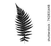 fern leaf silhouette. vector... | Shutterstock .eps vector #742831648