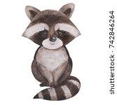 cute little racoon  watercolor... | Shutterstock . vector #742846264
