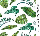 hand drawn green tropical... | Shutterstock .eps vector #742883506