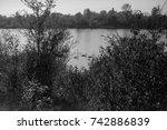 autumn landscapes of the autumn ...   Shutterstock . vector #742886839