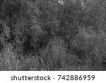 autumn landscapes of the autumn ...   Shutterstock . vector #742886959