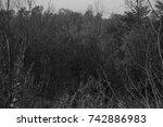 autumn landscapes of the autumn ...   Shutterstock . vector #742886983