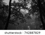 autumn landscapes of the autumn ...   Shutterstock . vector #742887829