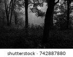autumn landscapes of the autumn ...   Shutterstock . vector #742887880