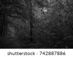 autumn landscapes of the autumn ...   Shutterstock . vector #742887886