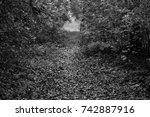 autumn landscapes of the autumn ...   Shutterstock . vector #742887916