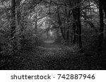 autumn landscapes of the autumn ...   Shutterstock . vector #742887946