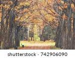 autumn park  rainy background   ... | Shutterstock . vector #742906090