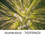 look bottom up into sky inside... | Shutterstock . vector #742934620
