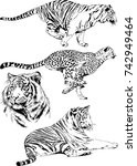 set of vector drawings on the... | Shutterstock .eps vector #742949464