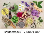 natural herbal medicine with... | Shutterstock . vector #743001100