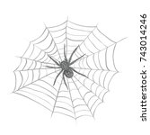 a spider weaves a spider web.... | Shutterstock . vector #743014246
