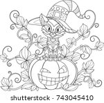 vector illustration of a... | Shutterstock .eps vector #743045410