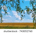 large agricultural field with... | Shutterstock . vector #743052760