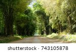 dirt road with green bamboo... | Shutterstock . vector #743105878
