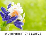 Small photo of Bouquet of spring flowers daffodils and mus cari