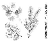 hand drawn set of fir and pine...   Shutterstock .eps vector #743127100