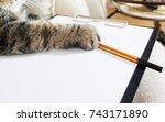 Business Cat Lies Empty...