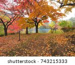 beautiful autumn and lake view | Shutterstock . vector #743215333